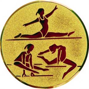 Спортивная  гимнастика  А130 G