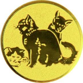 Коты  A144 G