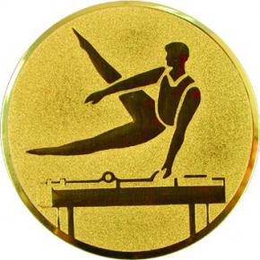 Спортивная гимнастика  А87 G