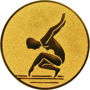 Спортивная гимнастика  А88  G