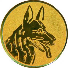 Собака  А77  G
